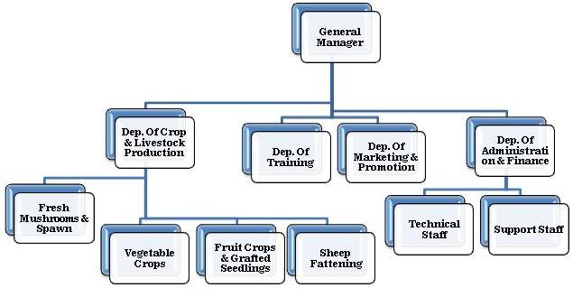 perdue farms management structure Perdue farms  , while the management executives perdue farms 8 wanted to  documents similar to perdue foods marketing case analysis.